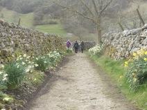 Yorkshire Dales Walk. Photo by Barbara Howe